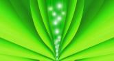 Cathy Hazel Adams Energy Healing Green Leaf