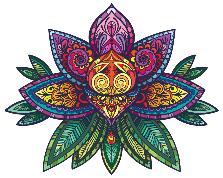 Cathy Hazel Adams Seminars Lotus